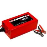 Cargador Automático 20-120Ah 48V 8A 500W