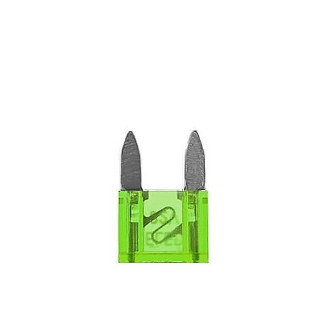100 Fusibles Mini 30A 32V Verde