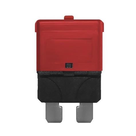 3 Fusibles Rearmables Tipo Mini 10A 24V Rojo