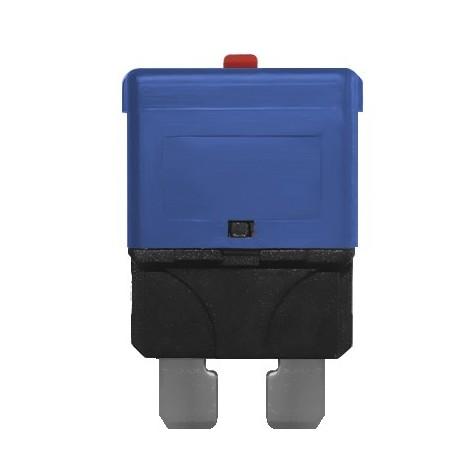 3 Fusibles Rearmables Tipo Mini 15A 24V Azul